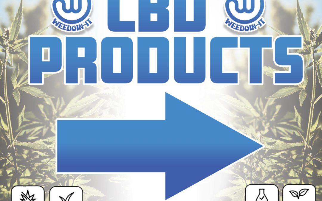 Best CBD Beauty Products Online