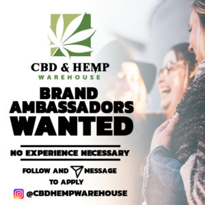 how to open a CBD business